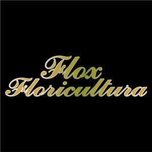 Flox Floricultura